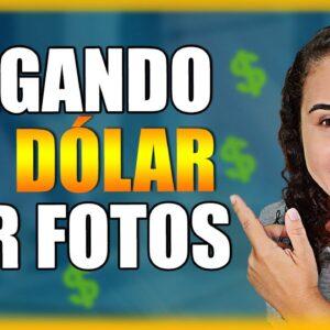 PROJETOS TRANSPERFECT | Empresa Paga Por Fotos Em Dólar No Paypal (VAGAS LIMITADAS)
